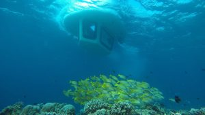 Lily Beach Maldives Submarine