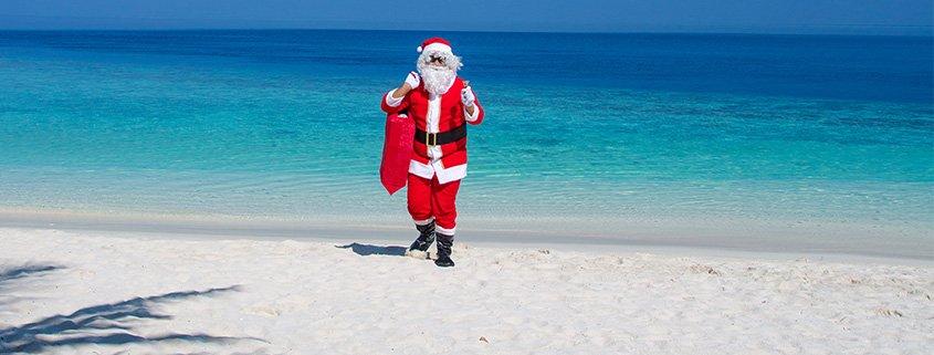 Lily Beach Christmas