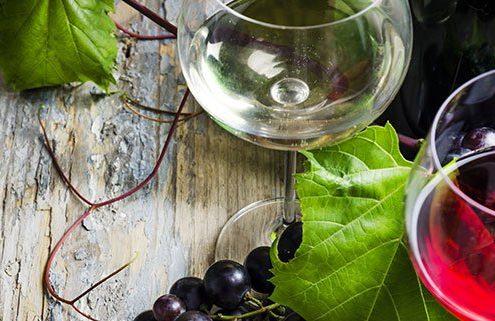 stonefish wines